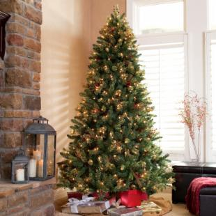 Saint Cloud Pine - Decorated - 7 ft. - Clear