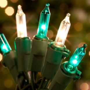 50 ct. Clear &amp; Green Mini Lights with Green Wire 6 in. Spacing (Case of 25)