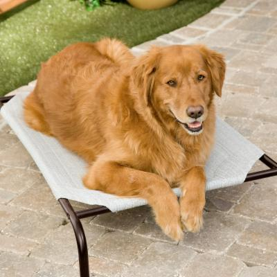 Coolaroo Deluxe Dog Bed - Grey Best Price