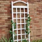  Dura-Trel Cambridge 6-ft. Vinyl Arch Trellis - White