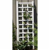  Dura-Trel Providence 6.25-ft. Vinyl Wall Trellis - White