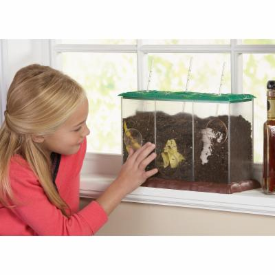 Educational Insights See Through Compost Container