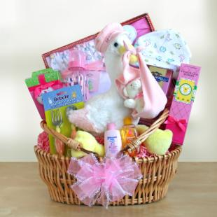 Special Stork Delivery Baby Girl Gift Basket