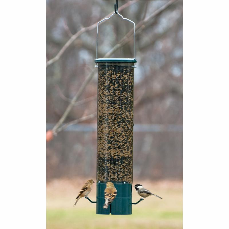 Wood Link The Magnet Squirrel Proof Feeder