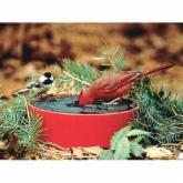  Happy Bird Solar Sipper Heated Bird Bath