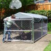 Grand Champion 4-ft. High Modular Dog Kennel