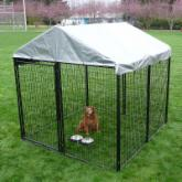 AKC 8 x 8 x 6 ft. Pro-Breeder Dog Kennel with Cover & Rotating Bowl System
