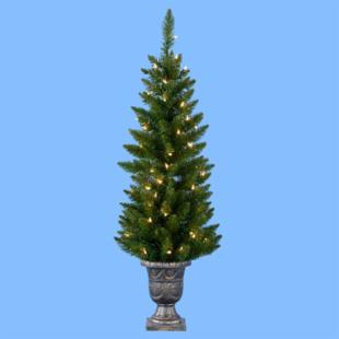 48 in. Potted Point Pine Pre-Lit Christmas Tree