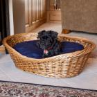  Snoozer Wicker Pet Basket with Navy Pillow