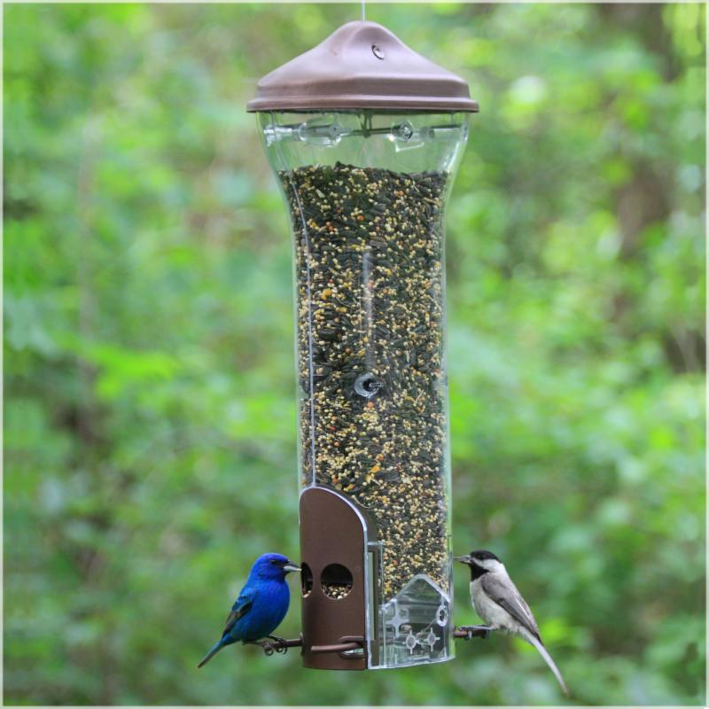 Perky Pet Wild Bird Breakaway Squirrel Proof Bird Feeder