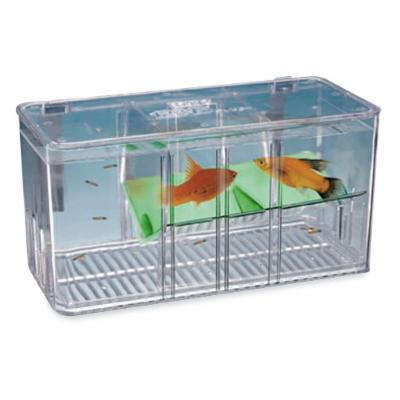 Five Plus Breeder & Nursery Fish Tank