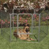 Precision Courtyard Dog Kennel