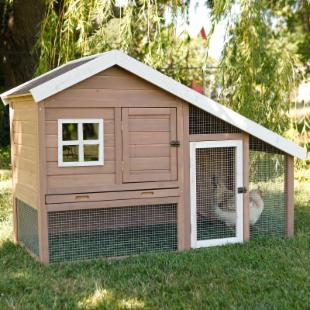Cape Cod Chicken Coop