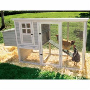Precision Pet Products Hen House Chicken Coop