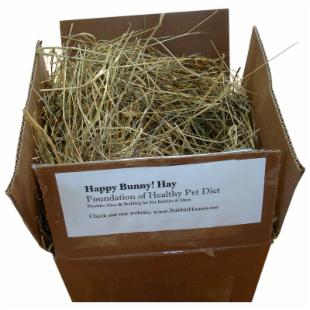 Happy Bunny Hay - Medium