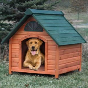 Spotty Wooden Insulated Dog House