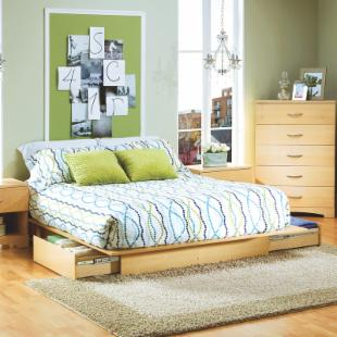Studio Queen Storage Platform Bed