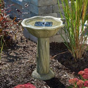 Smart Solar Acadia Frog Solar Bird Bath