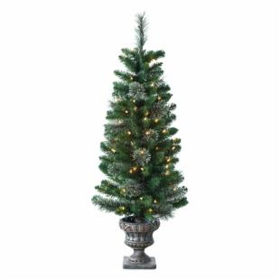 Potted Frosted Hard Needle Atlantic Cashmere Tree