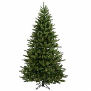 Black Hills Spruce Full Unlit Christmas Tree