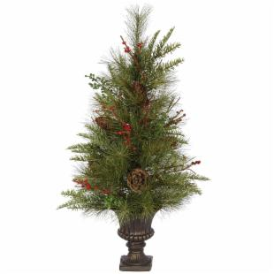 30 in. Jack Pine Potted Tree