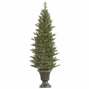 Vickerman 5 ft. Potted Mini Noble Pre-Lit LED Christmas Tree