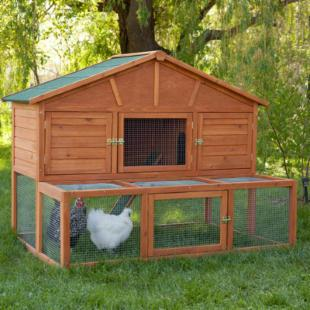 Boomer & George Haven Chicken Coop
