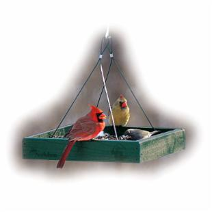 Going Green Recycled Plastic Platform Bird Feeder