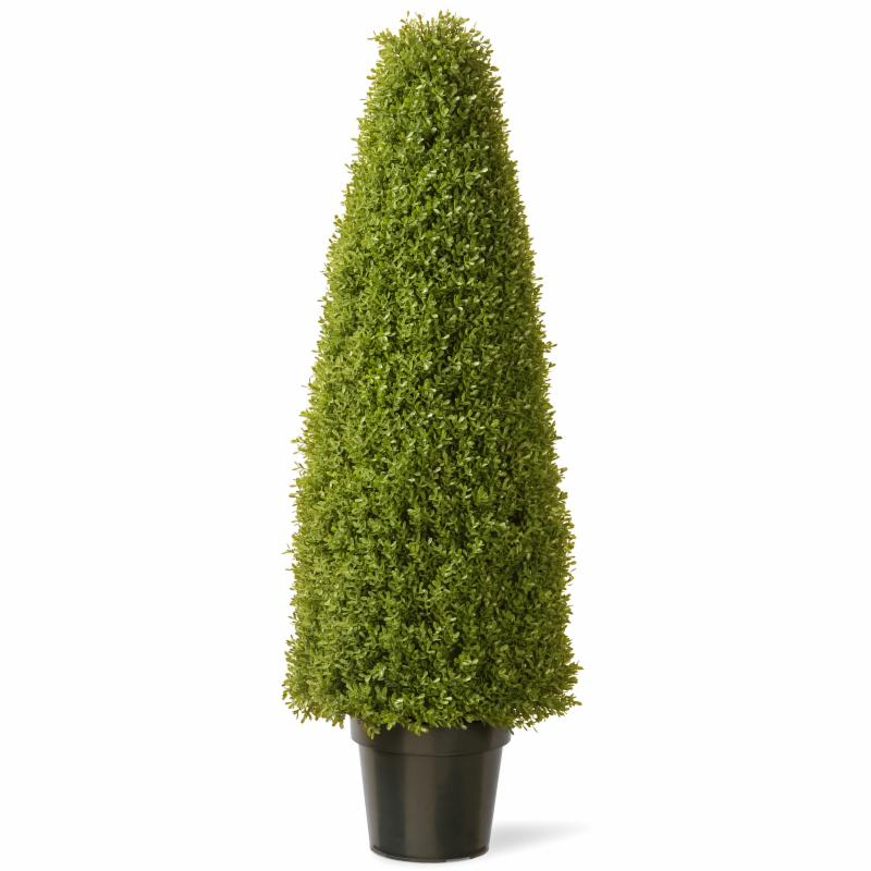 Boxwood Silk Tree with Green Pot