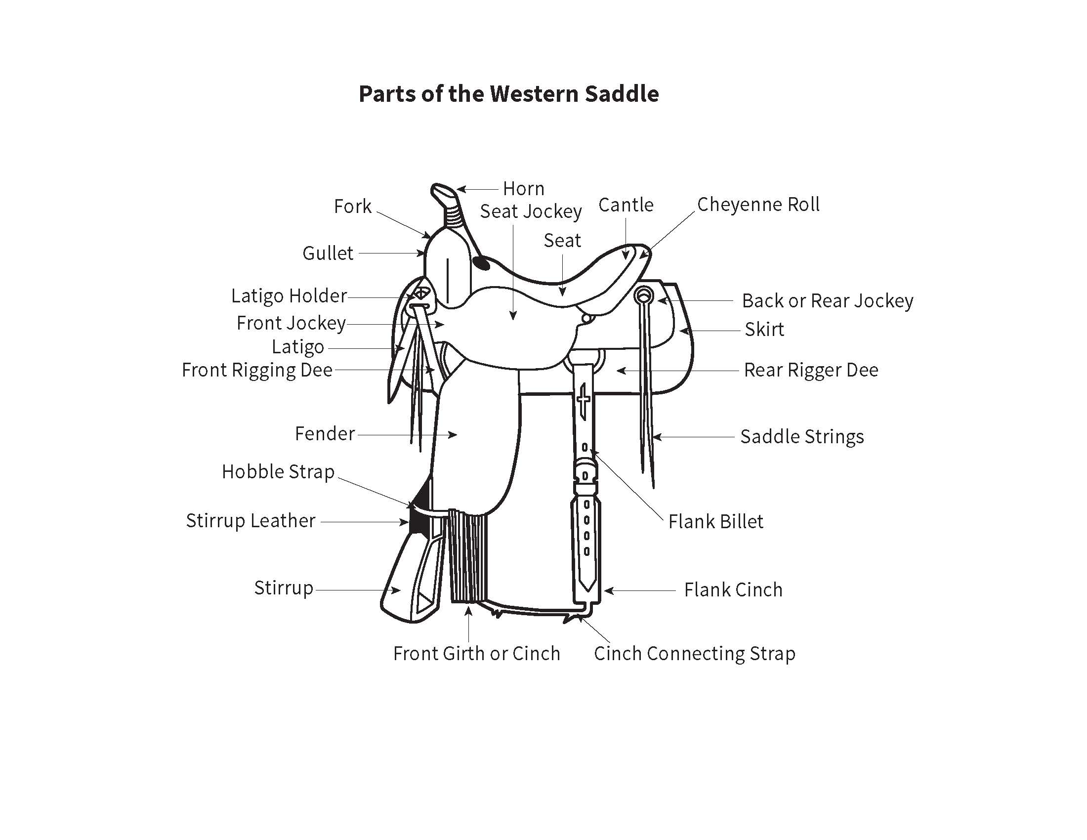 horse tack buying guide