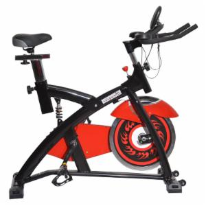 Soozier Pro Upright Stationary Exercise Cycling Bike with LCD Monitor