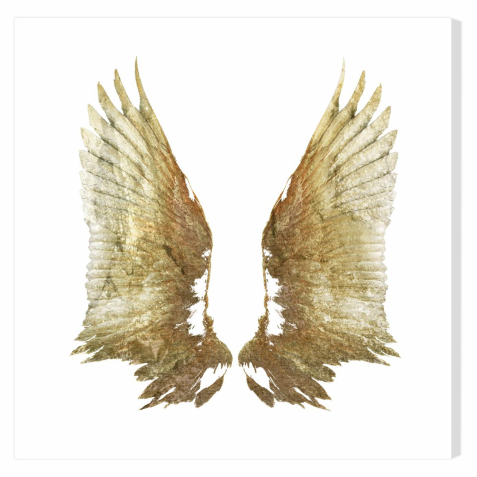 Oliver Gal Golden Wings White Background Canvas Art - 159...