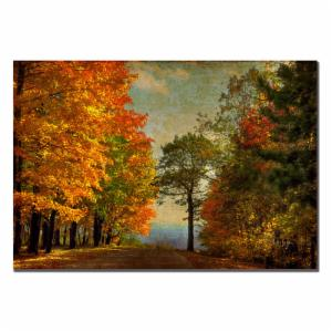 Autumn on the Mountain Wall Art by Lois Bryan