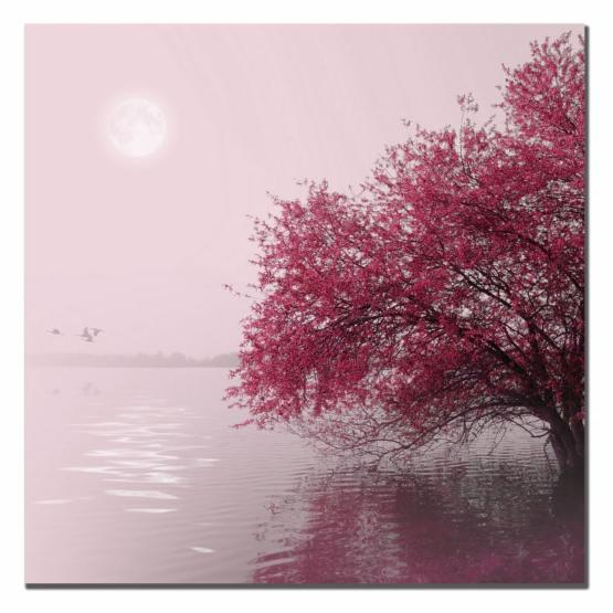 Full Moon on the Lake Canvas Art by Philippe Sainte Laudy