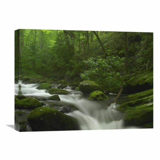 Global Gallery Roaring Fork River Flowing Through the Great Smoky Mountains National Park Tennessee Wall Art