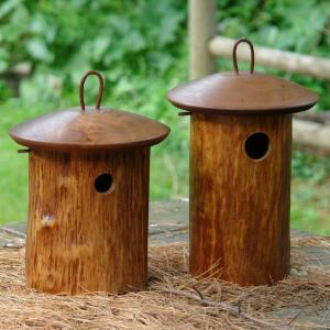 Mango Tree Natural Bird House