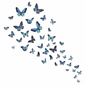 WallPops Mariposa Butterfly Wall Decal