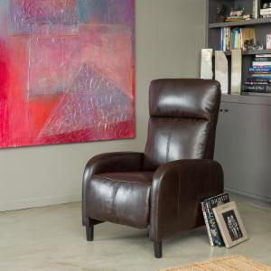 Best Selling Home Decor Furniture Clover Recliner