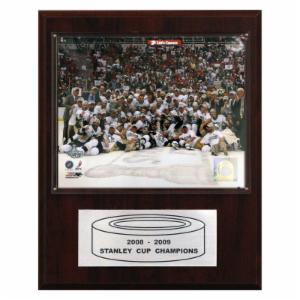 NHL 12 x 15 in. Penguins 2008-09 Stanley Cup Celebration Champions Plaque