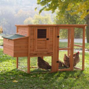 Boomer & George Nesting Quarters Chicken Coop