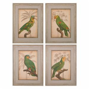 Sterling Parrot And Palm I II III IV Wall Art - Set of 4