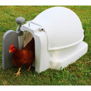 Good Ideas Mini Chicken Coop