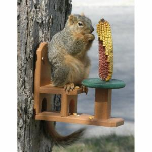 Songbird Essentials Recycled Poly Squirrel Table and Chair Feeder