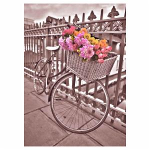 Bicycle Canvas Wall Art - 20W x 28H in.