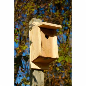 Heartwood Eastern Bluebird & Swallow Bird House