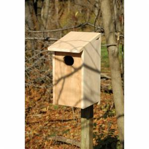 Heartwood Wood Duck Bird House