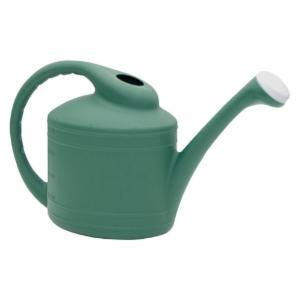 Dynamic Design Plastic Watering Can