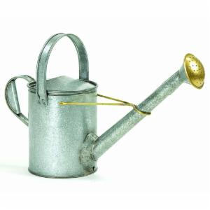 Achla Designs Galvanized Long Neck Watering Can