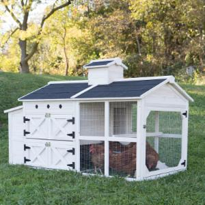Boomer & George Cottage Chicken Coop