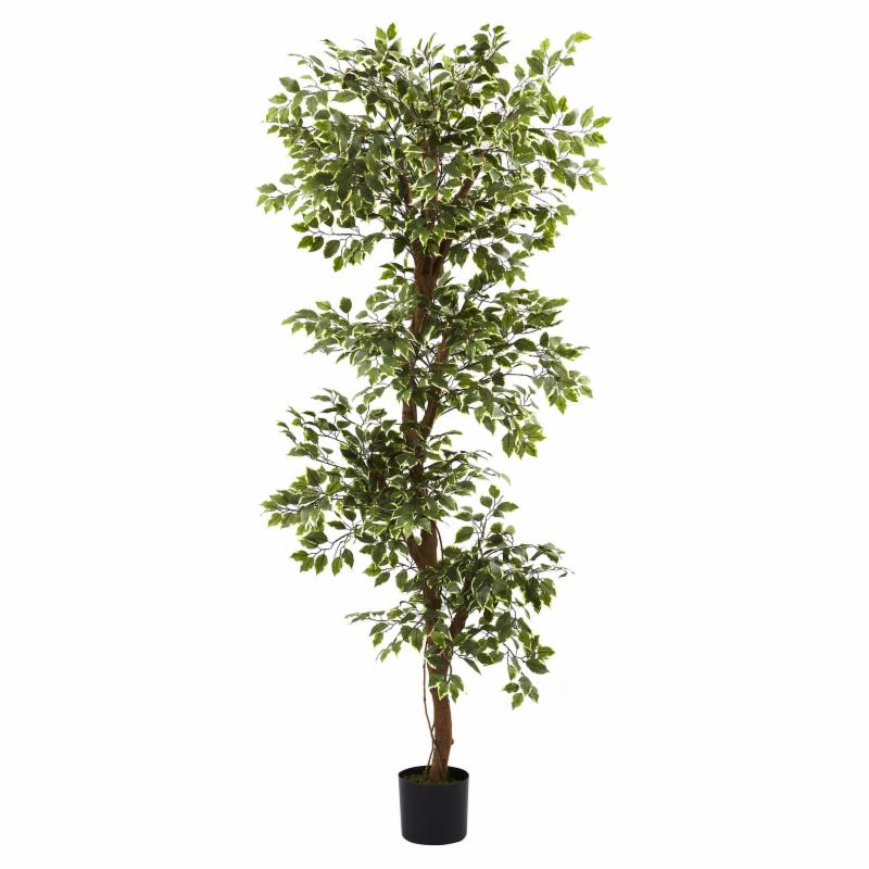 Nearly Natural 6 ft. Variegated Ficus Silk Tree - 5345